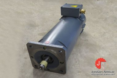 magnetic-BR-80-P-22_17-dc-servo-motor