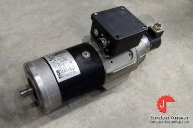 motor-power-ESA-6S-5208-B14_80-servo-motor