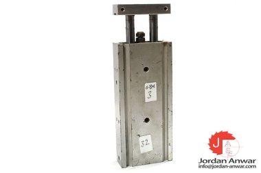 smc-CXSM20-75-dual-rod-cylinder