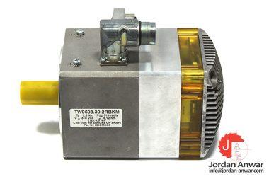 phase-TW0503.30.2RBKM-servo-motor