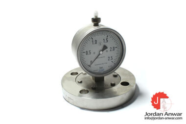 wika-EN1092-1-flanged-process-connection-with-pressure-gauge