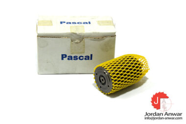 pascal-CSY06-L-41640-B-hydraulic-cylinder