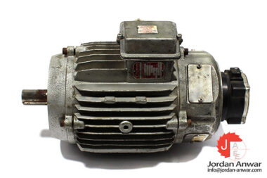 r.vassal-SFUV10-electric-motor