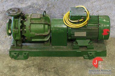 dickow-pumpen-NML-32_210-magnetic-driven-process-pump