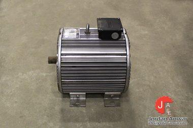 frigoblock-132-125-4-3-phase-electric-motor-2