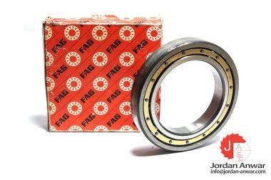 fag-6021M.C4.S1-deep-groove-ball-bearing
