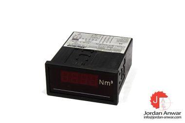 martens-DP9648-1-0-1-10-economy-panel-meter